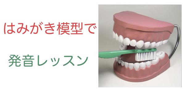 はみがき模型で発音指導!